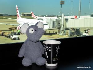 Fanta nimmt morgens am Flughafen von Brisbane einen Kaffee