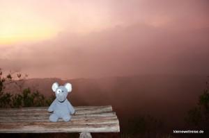 Fanta bei Sonnenaufgang