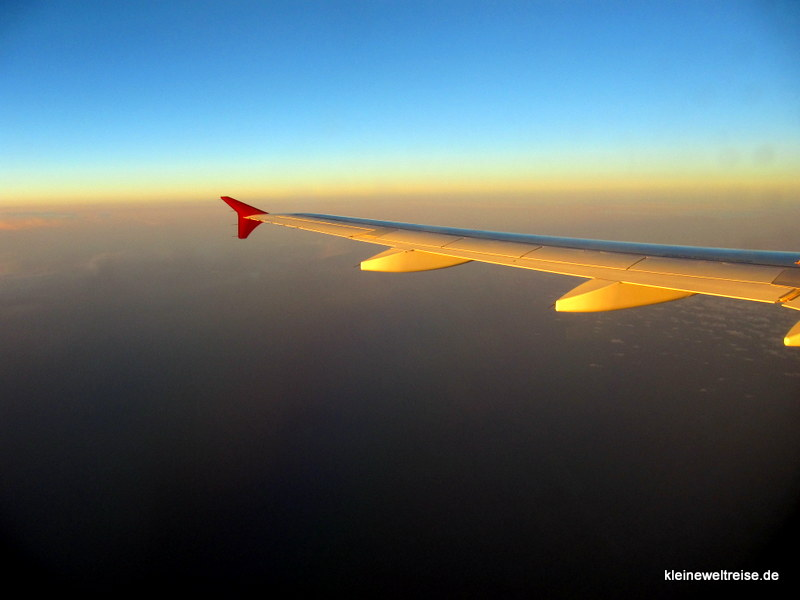 Fluegel bei Sonnenuntergang