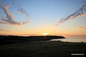 Sonnenuntergang vor dem Wave and Wildlife Cottage mit Känguru