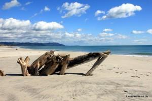 In Bowentown am Strand der Morgen danach