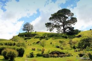 Hobbiton im Hügel