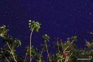 der Sternenhimmel in Neuseeland