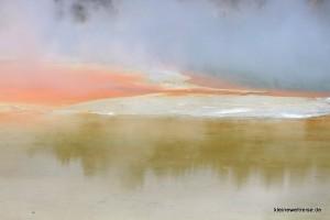 am Champagne Pool und Artists Palette