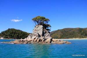 Felsen im Abel Tasman National Park