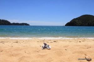 Fanta am Strand, Abel Tasman National Park