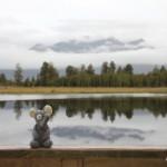 Das Spiegelbild am Lake Matheson