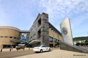 Das Te Papa Museum