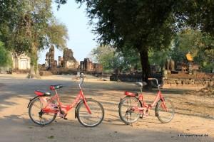 Die Fahrräder