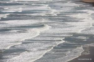 Wellen am East Cape