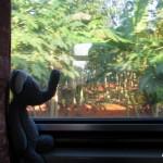 4 Transportmittel in Thailand: Zug und Bus (Teil 2)