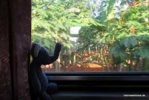 Fanta im Zug