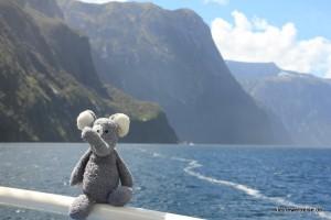 Fanta am Milford Sound