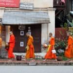 Nein, wir füttern keine Mönche!