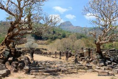 Wat Phou, der Weg zu den Stufen