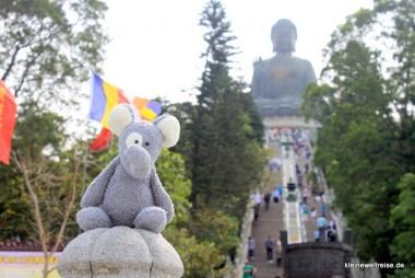 Fanta vor dem Aufstieg zum Buddha