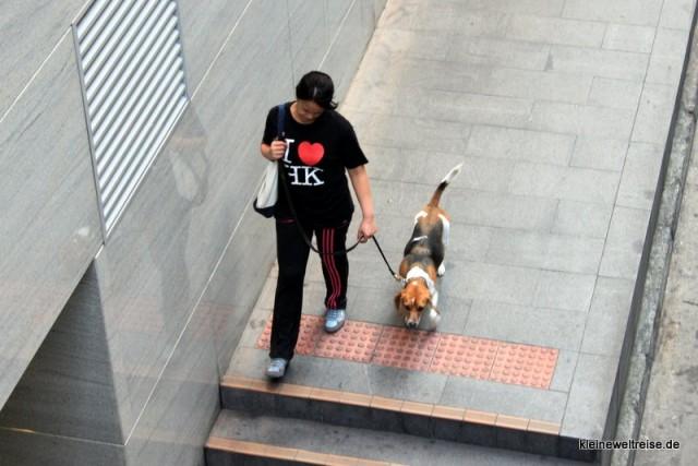Leben von den Mid Levels Escalators aus gesehen