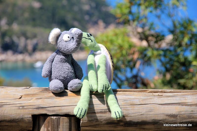 ein schönes Paar: Fanta mit Schildi Magnetic Island