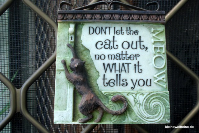 dont let the cat out
