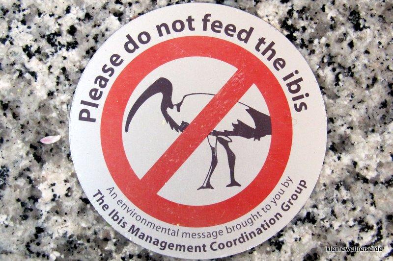 nicht den Ibis füttern!