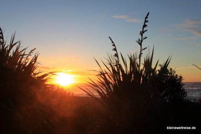Sicht aus den Dünen, Neuseeland