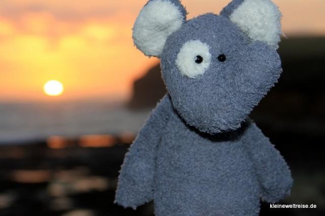 Fanta bei Sonnenuntergang