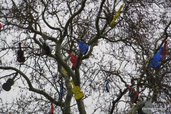 Chelli im Baum