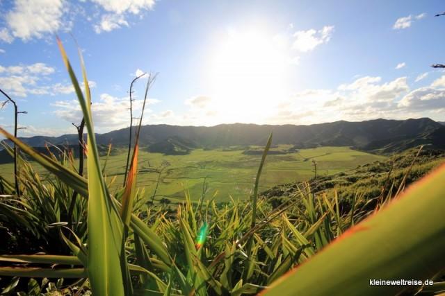 Vordergrund: East Cape Neuseeland