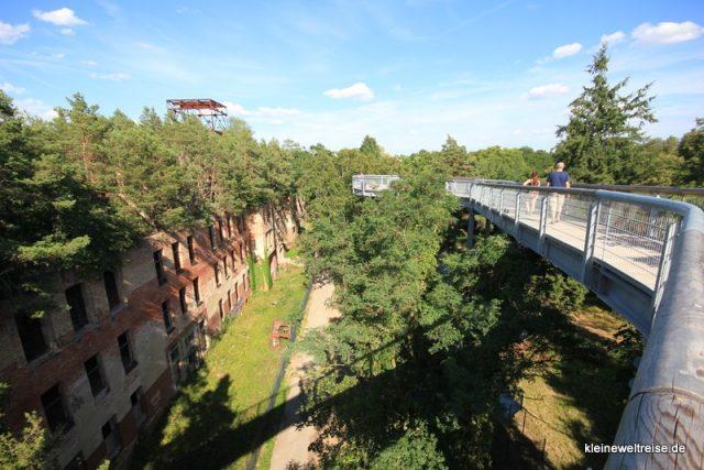 Beelitz Baumwipfelpfad